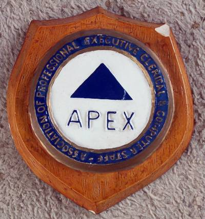 APEX plaque